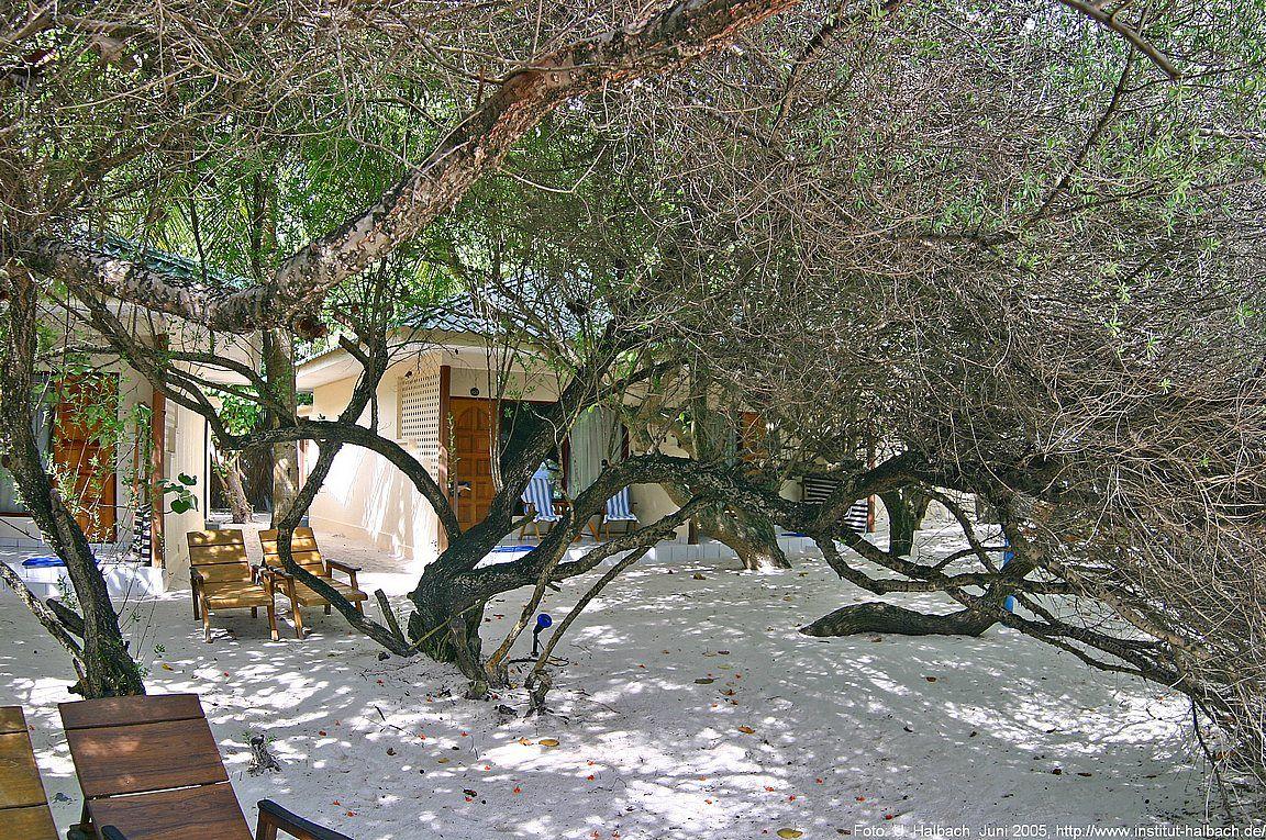 2005-Eriyadu-75