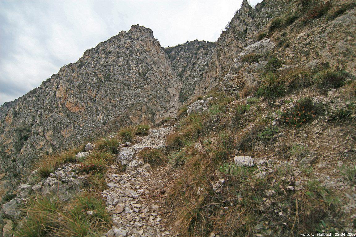 2007-Sopino-56