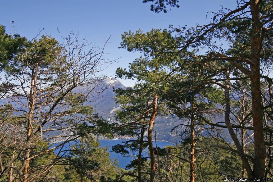 2008-04-Gardasee-25