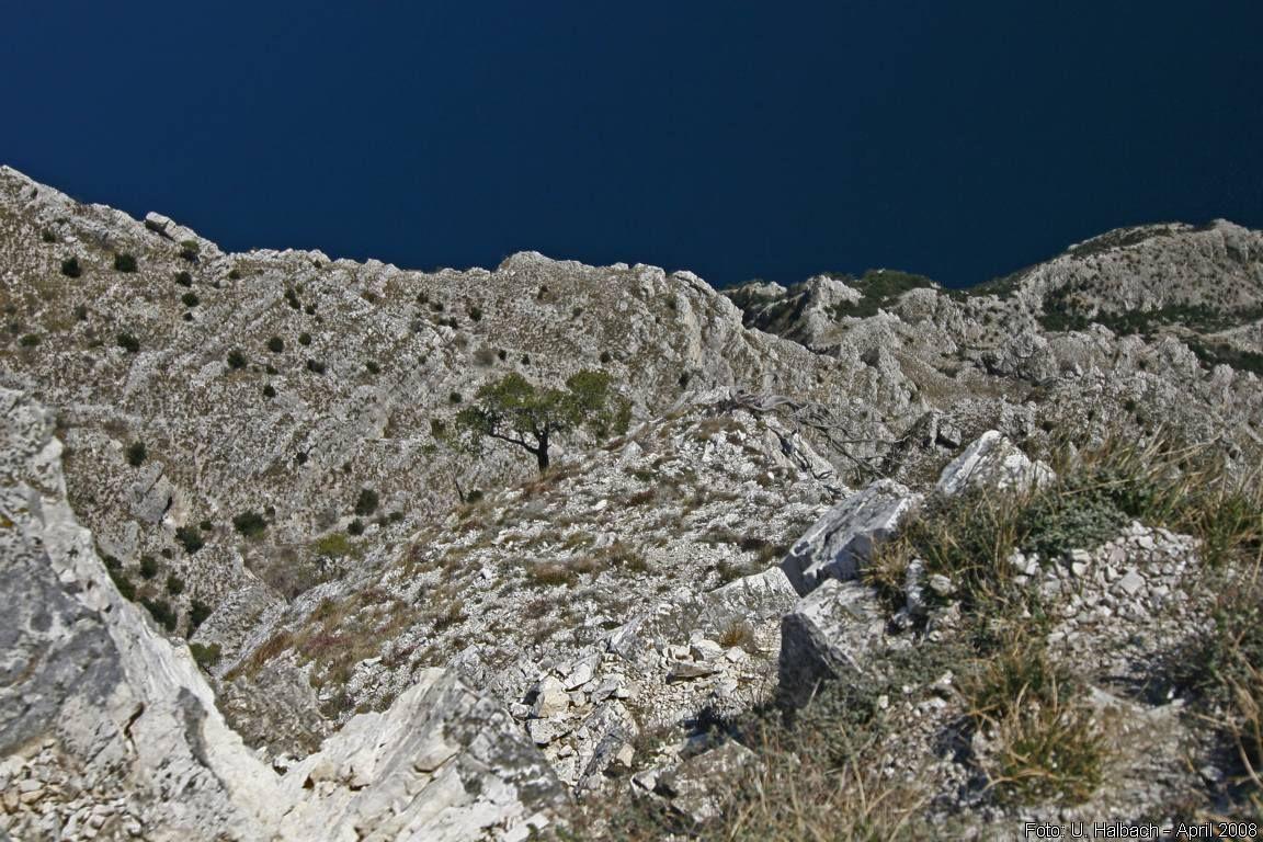 2008-04-Gardasee-31