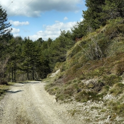 06 Gardasee 2016 Halbach