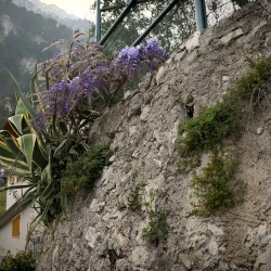 03 Gardasee 2016 Halbach