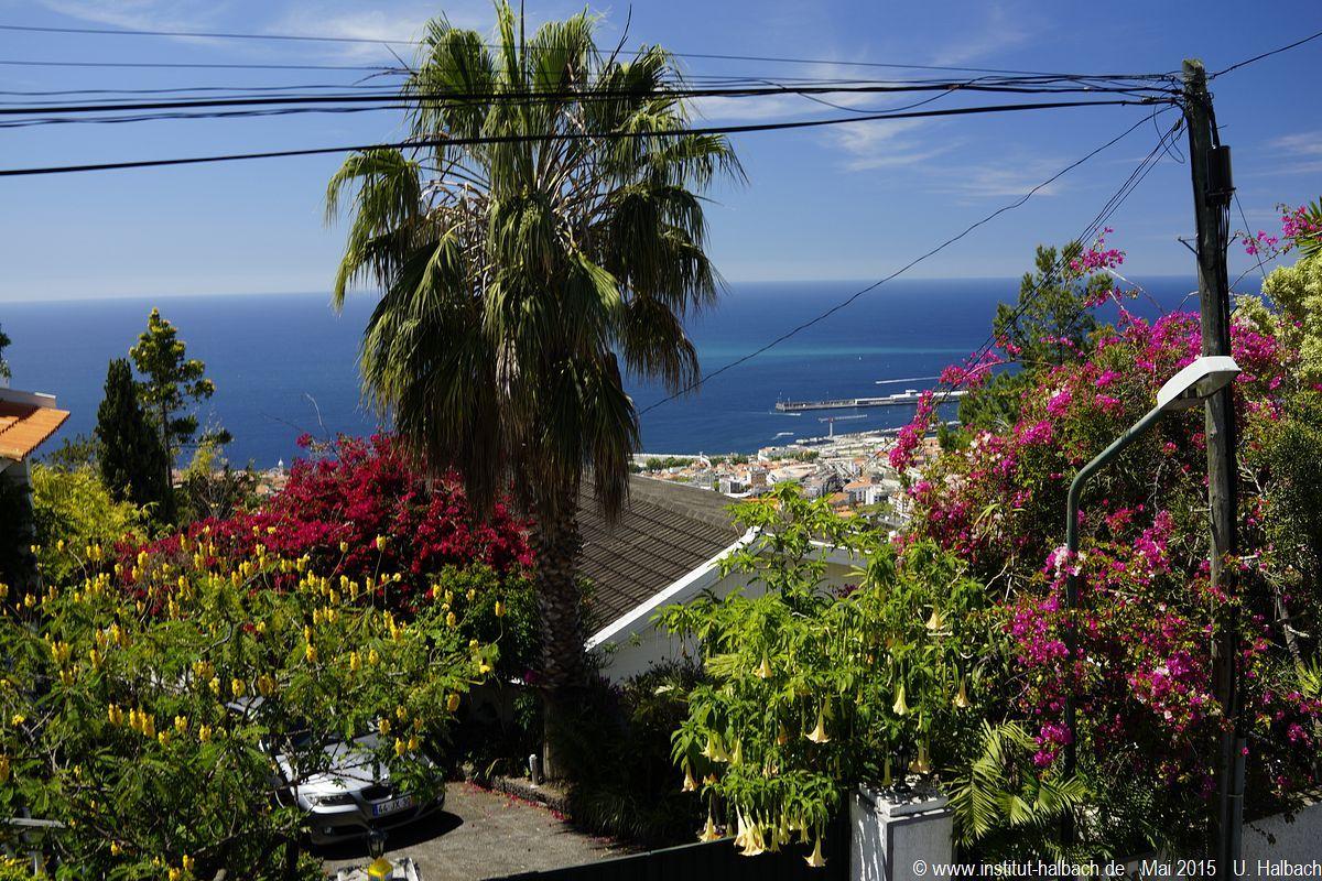 524-Madeira-2015_05_02