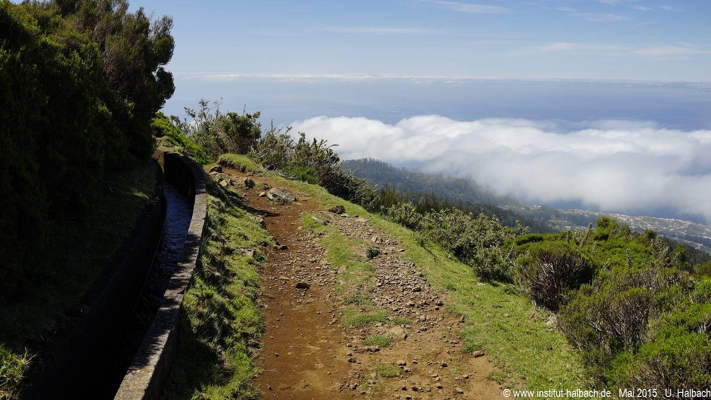 464 Madeira 2015_05_01