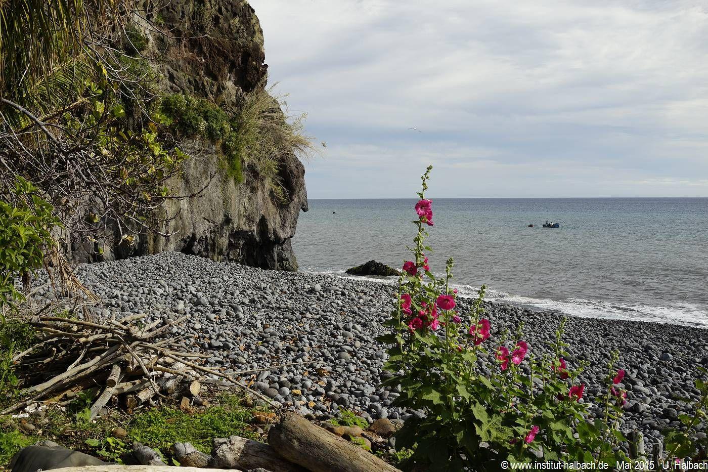 645 Madeira 2015_05_02