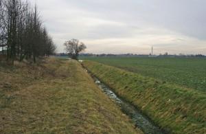 Seitengraben des Strengbaches - (Sachsen-Anhalt)