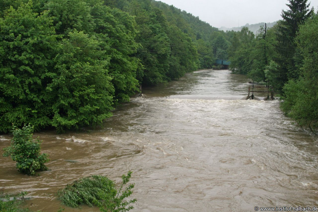 Überflutung Göltzsch 01 Juni 2013 _Nr02