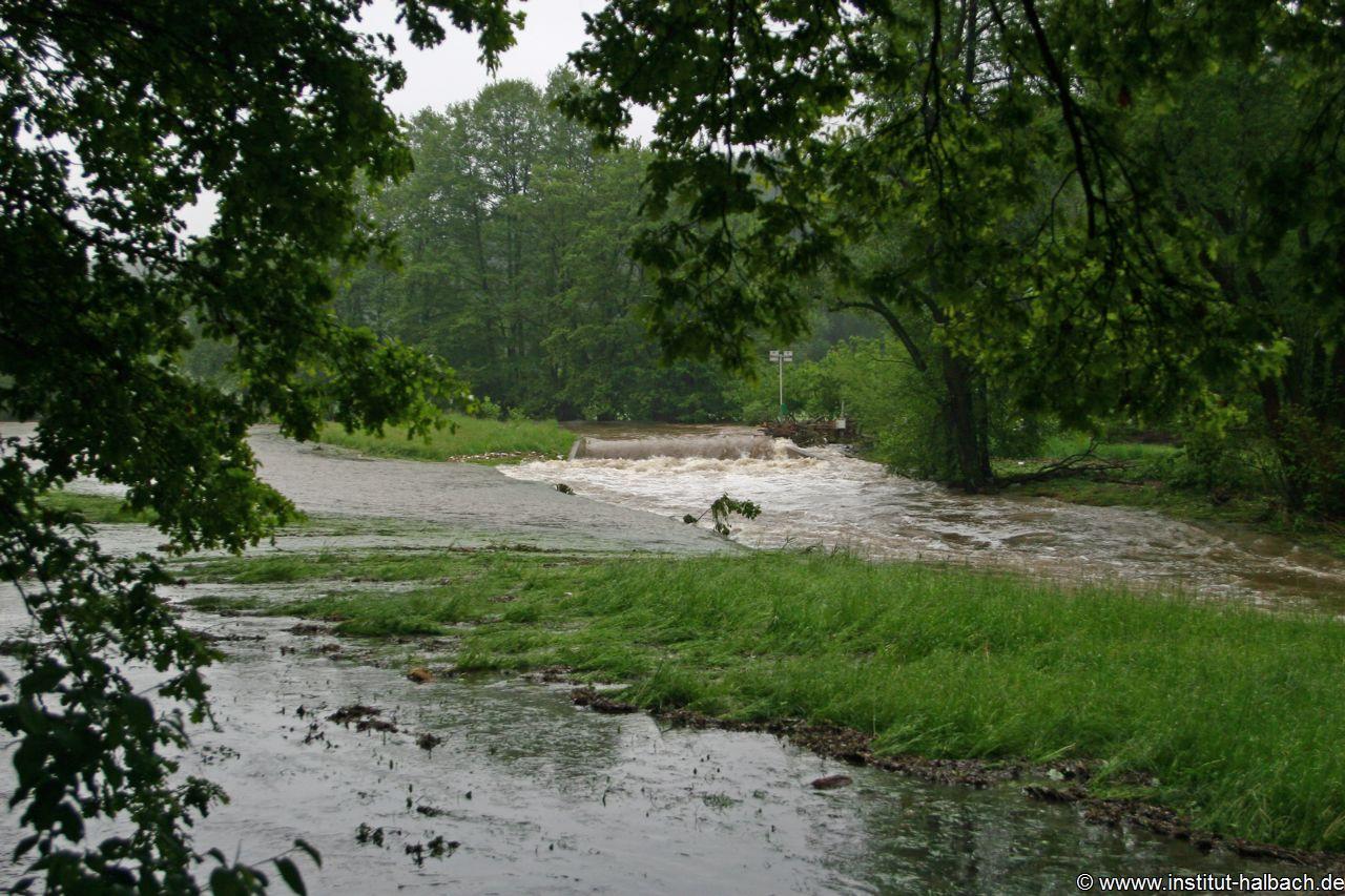 Überflutung Göltzsch 01 Juni 2013 _Nr05