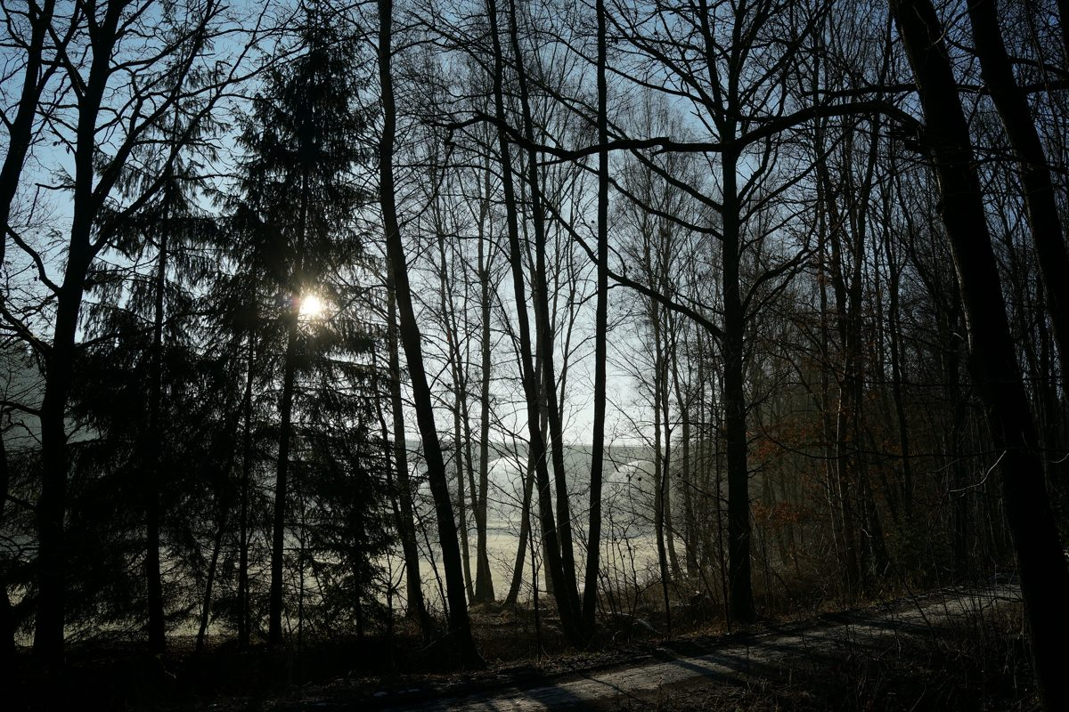 29 Holzbach_U_Halbach_Febrau 2015