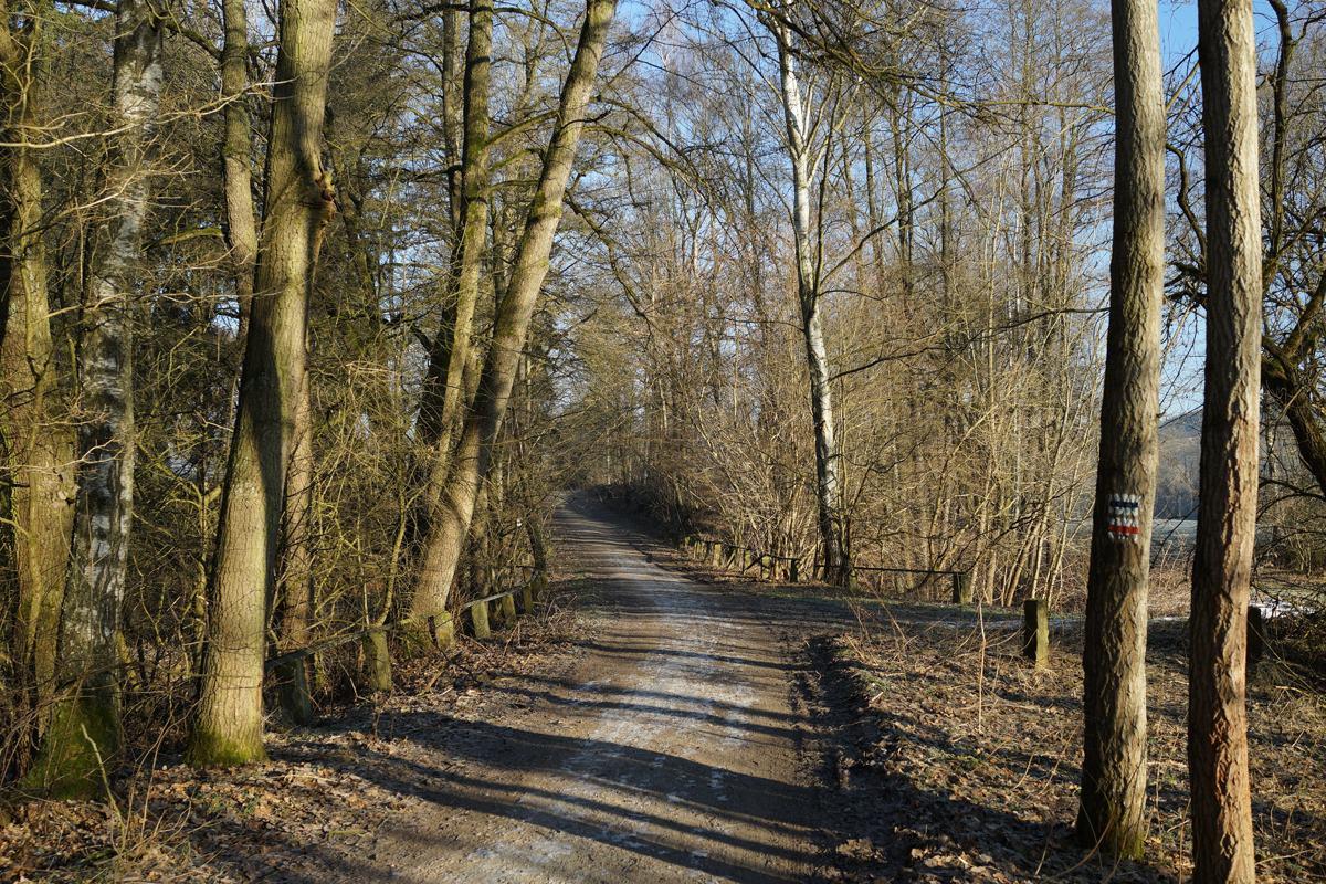 30 Holzbach_U_Halbach_Febrau 2015