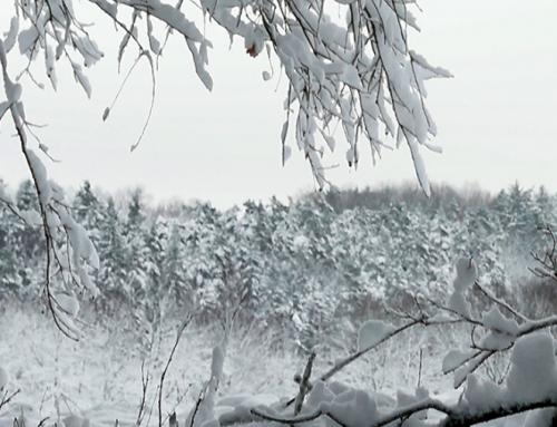 Schlagzeilen aus Russland über eine kommende kleine Eiszeit